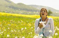 بهار، فصل آلرژیها