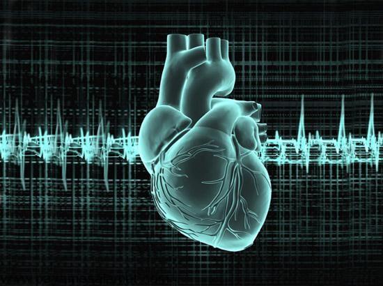 بهترین مواد برای تقویت قلب چیست؟