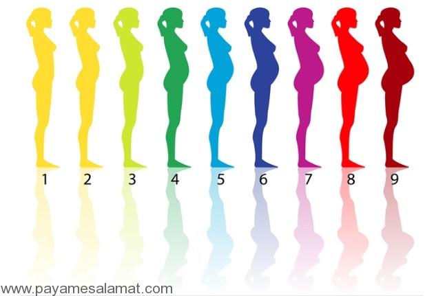 افزایش وزن پس از بارداری و خطر مرگ نوزاد دوم