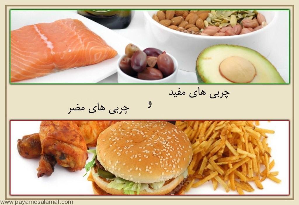 چربی های مفید و مضر برای کلسترول خون