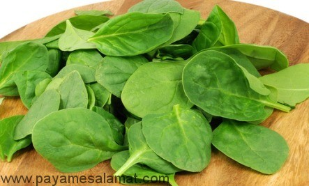 خواص اسفناج - سبانخ - Spinach