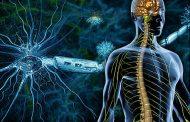 اطلاعات مفید در مورد بیماری MS