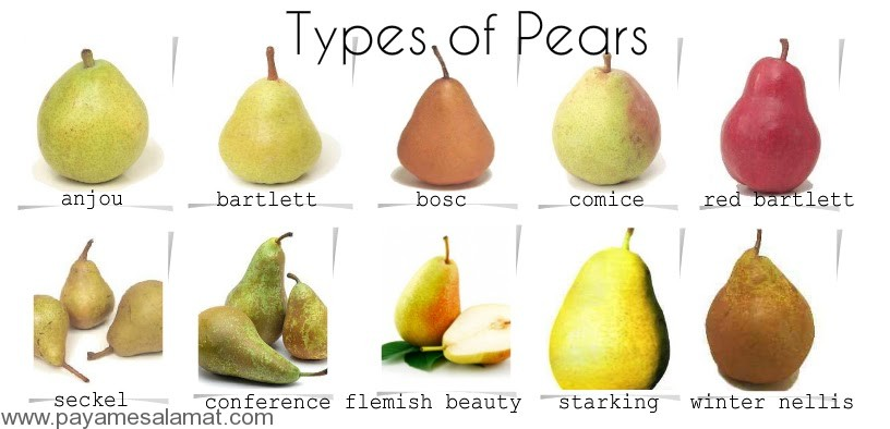 type-of-pear