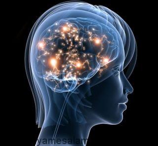 تاثیر استرس بر روی عملکرد مغز چیست؟