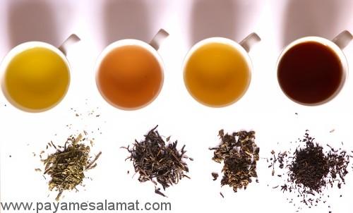 خواص ۵ نوع چای اصلی