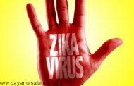 هشدارهای جدی درباره ویروس زیکا