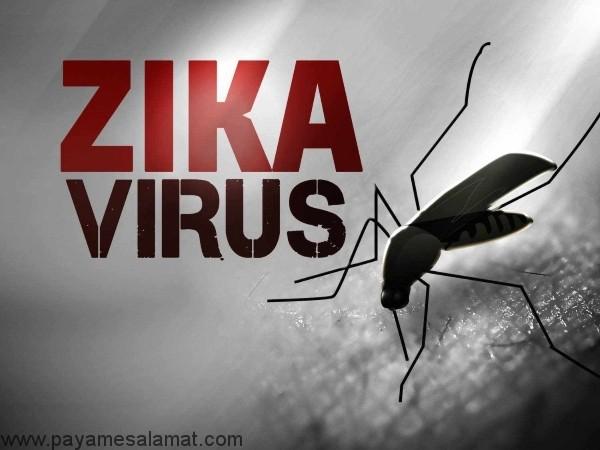نکات مهم در مورد بارداری و ویروس زیکا