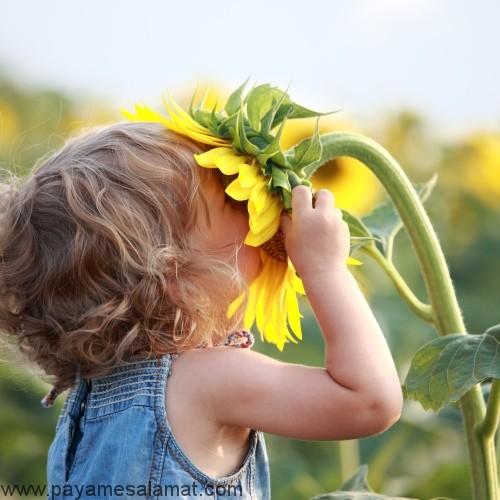 روند رشد حواس در کودکان یک تا دو ساله