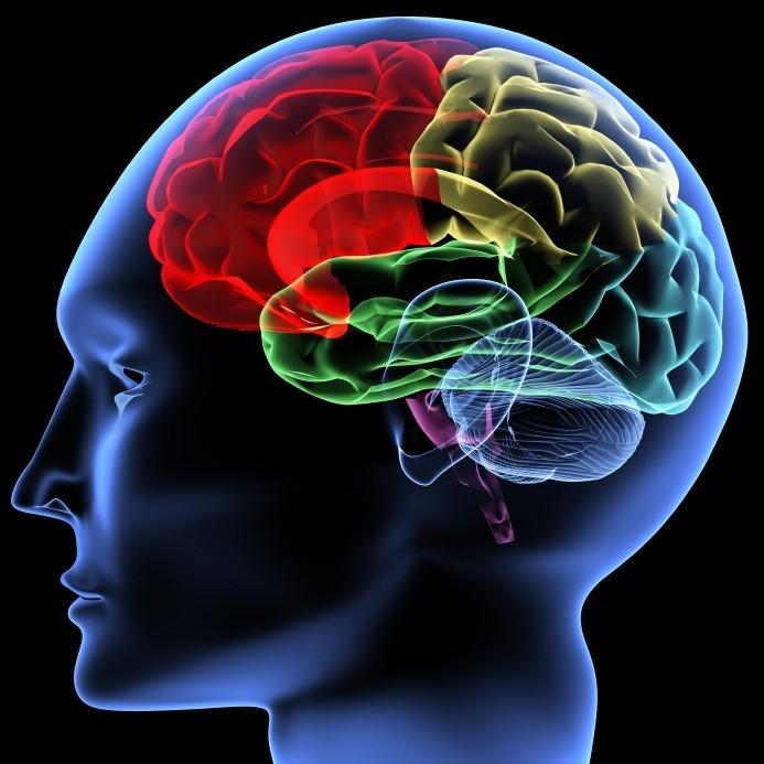 دوپامین و علائم کمبود آن در بدن