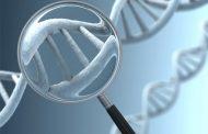 دلایل تجویز آزمایش ژنتیکی چیست؟