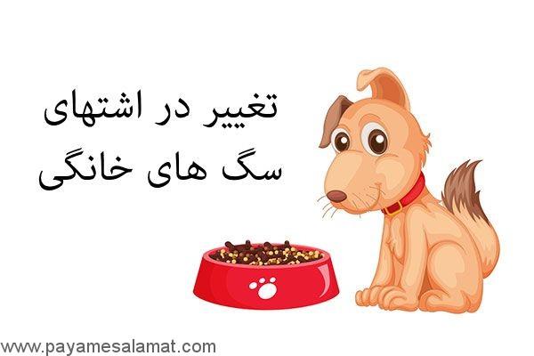 تغییر در اشتهای سگ های خانگی
