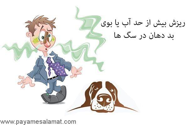 ریزش بیش از حد آب یا بوی بد دهان در سگ ها