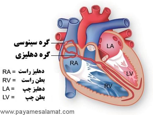 آشنایی با دستگاه تنظیم ضربان قلب (باطری قلب)