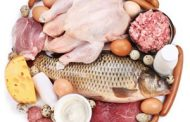 مواد غذایی با پروتئین بالا در هر کالری