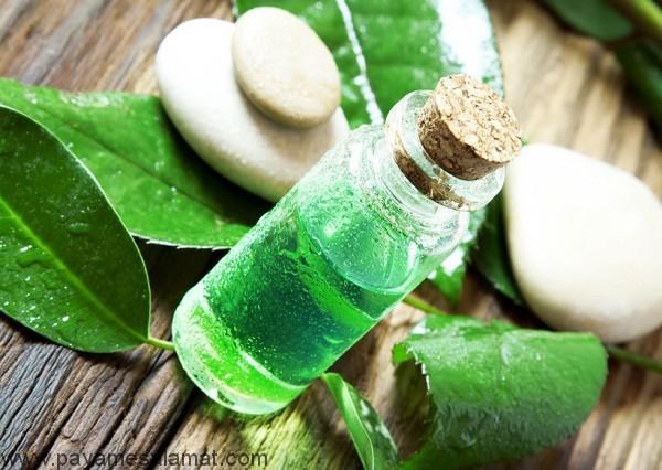 بهترین روغن های طبیعی برای درمان بواسیر (هموروئید)