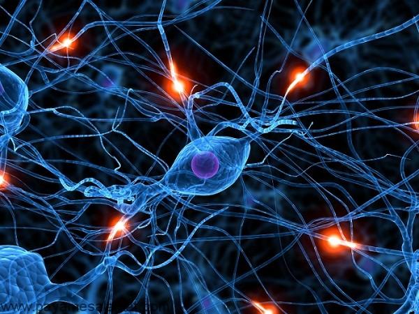 7 نشانه آسیب عصبی