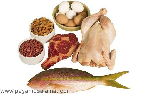نقش پروتئین در بدن چیست؟