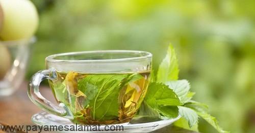 چای گیاهی برای بهبود هضم