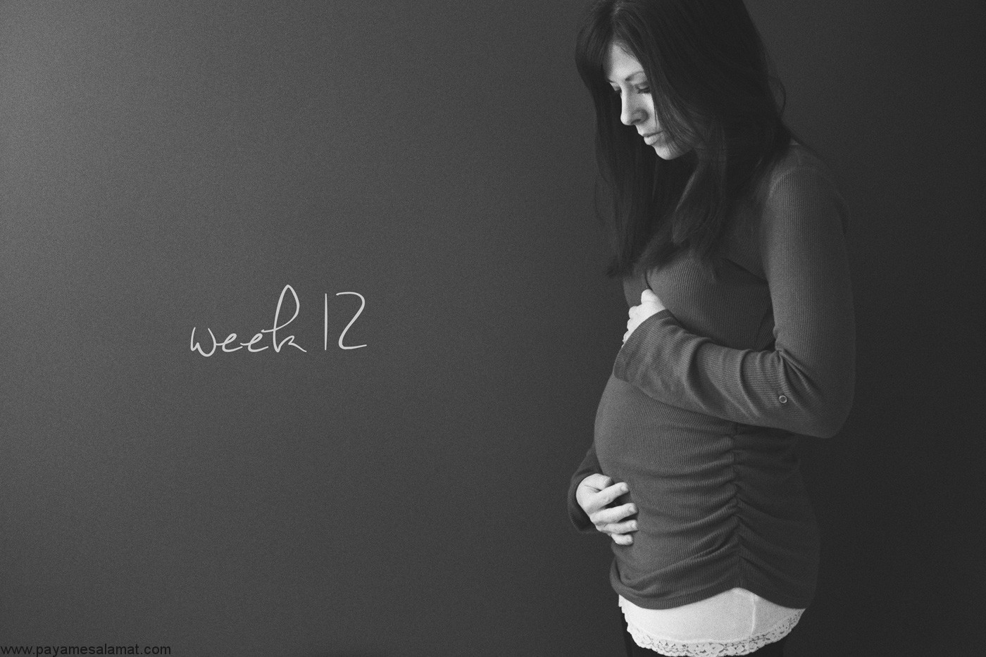همه چیز درباره سه ماه اول بارداری
