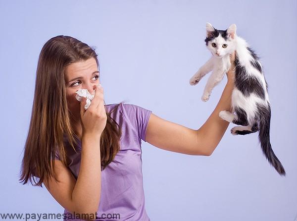 علل، علائم، آزمایش و درمان حساسیت به گربه