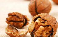 نشانه ها و درمان حساسیت به آجیل درختی