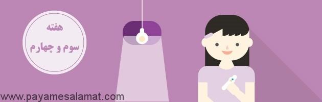 جدول زمانی و علائم بارداری در سه ماهه اول