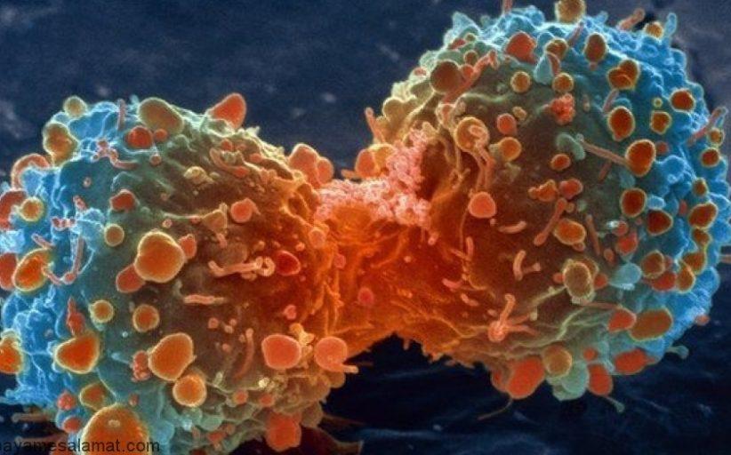 همه چیز در مورد سرطان