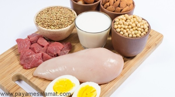 ۶ کارکرد اصلی پروتئین ها در بدن