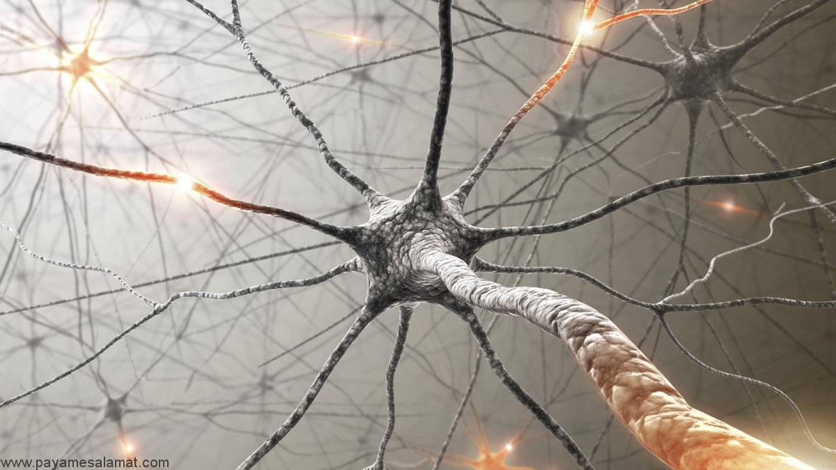 علل، نشانه ها، تشخیص و درمان نوروپاتی اتونومیک