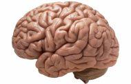 نشانه ها، علل و درمان آبسه مغزی
