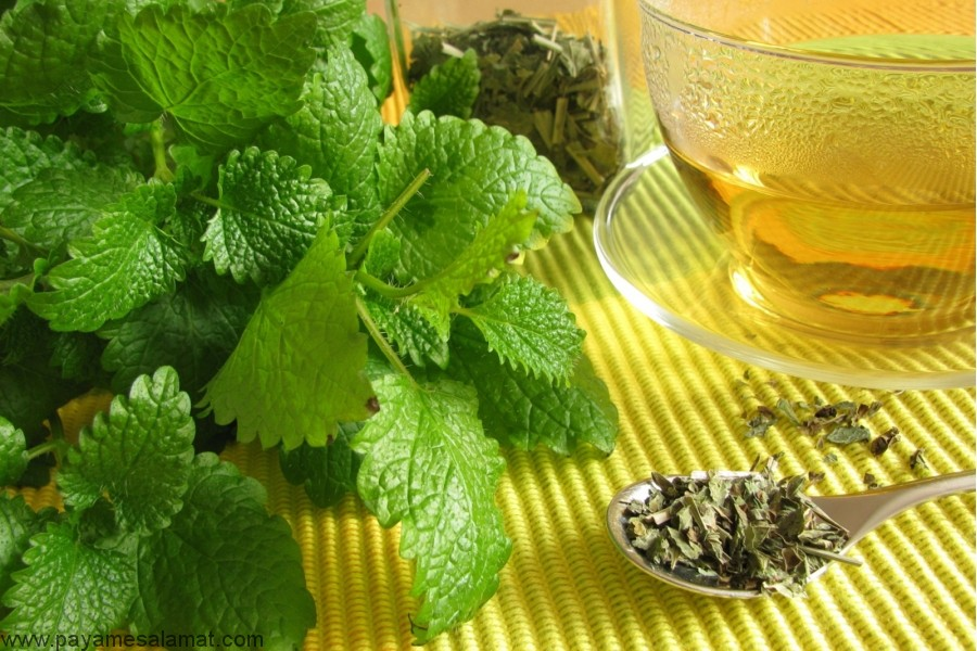 بهترین روش های درمان گیاهی سندرم روده تحریک پذیر