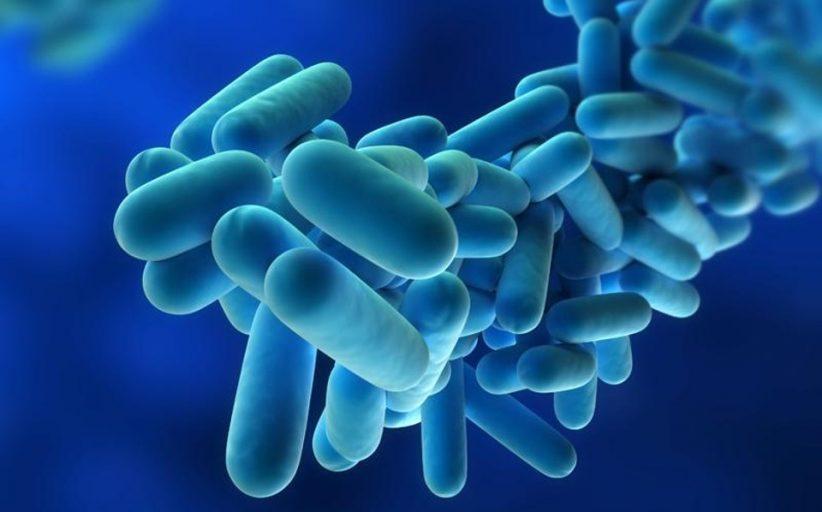 علت ابتلا به بیماری لژیونر چیست و چه روش هایی برای تشخیص و درمان آن وجود دارد؟