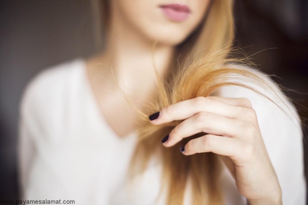 روش های خانگی درمان موخوره بدون کوتاه کردن مو