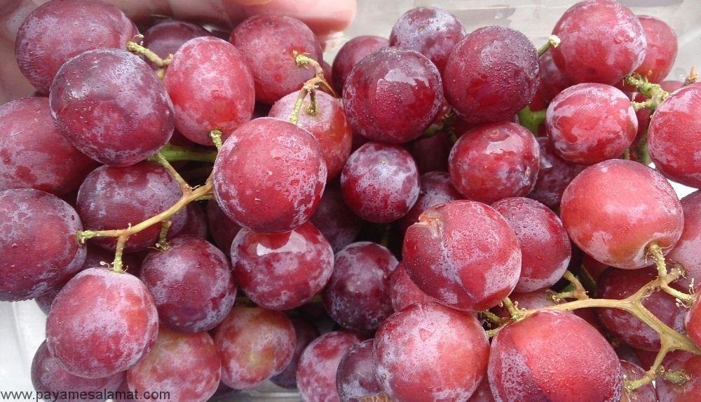 خواص انگور قرمز بی هسته برای بدن