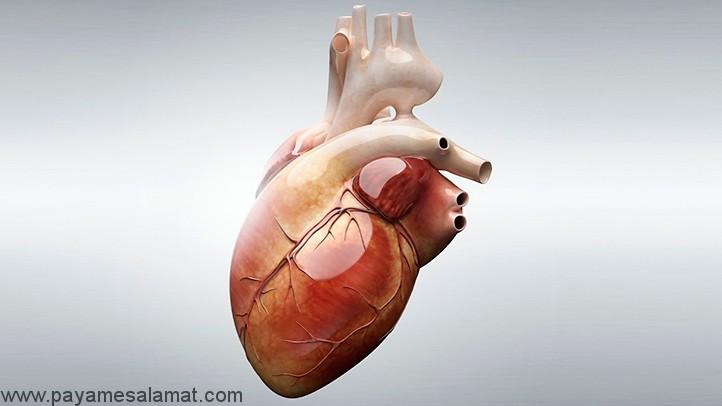 درمان های خانگی برای بیماری های قلبی به روش های طبیعی
