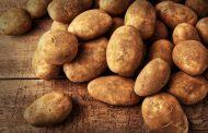 پروتئین موجود در سیب زمینی پخته چقدر است؟