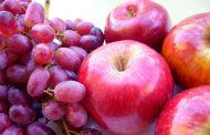 کشف جدیدترین ترکیب گیاهی برای درمان سرطان پروستات