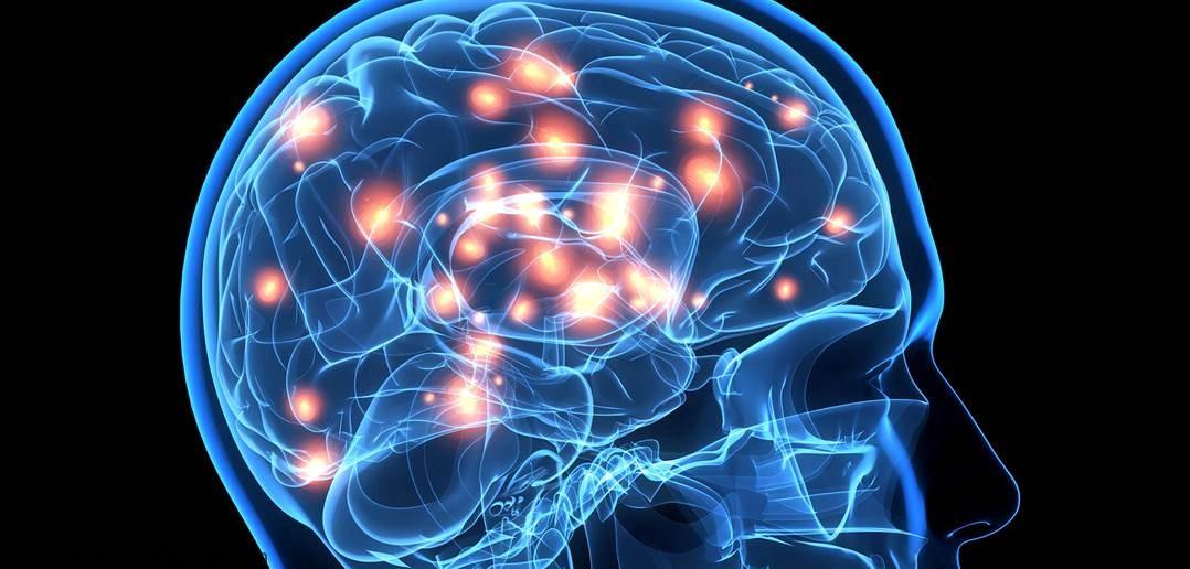 آشنایی با انواع گیرنده های دوپامین در بدن