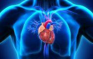 فشار خون ریوی ؛ همه آن چه که باید در مورد این بیماری بدانید