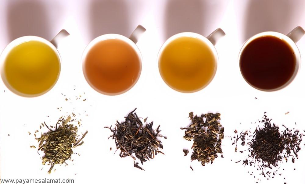 معرفی انواع چای و خواص درمانی آن ها