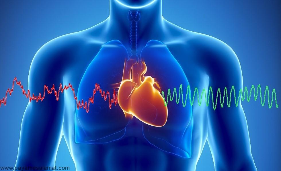 همه چیز در مورد، آناتومی، کارکرد، اجزا و بیماری های قلب