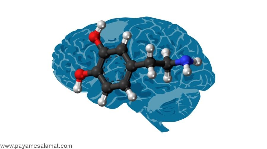 چگونگی کاهش سطح دوپامین در بدن