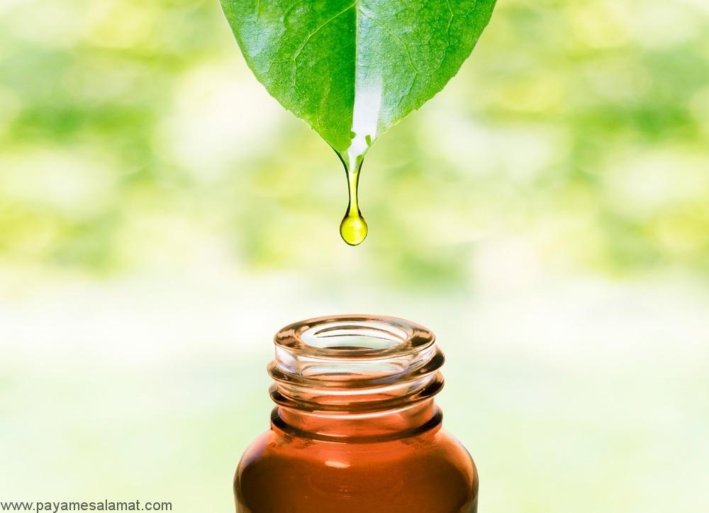 خواص روغن درخت چای برای درمان انواع مختلفی از بیماری ها