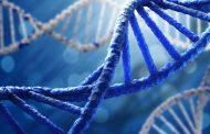 چگونگی افزایش عملکرد DNA میتوکندری برای بهبود سلامت و مبارزه با پیری