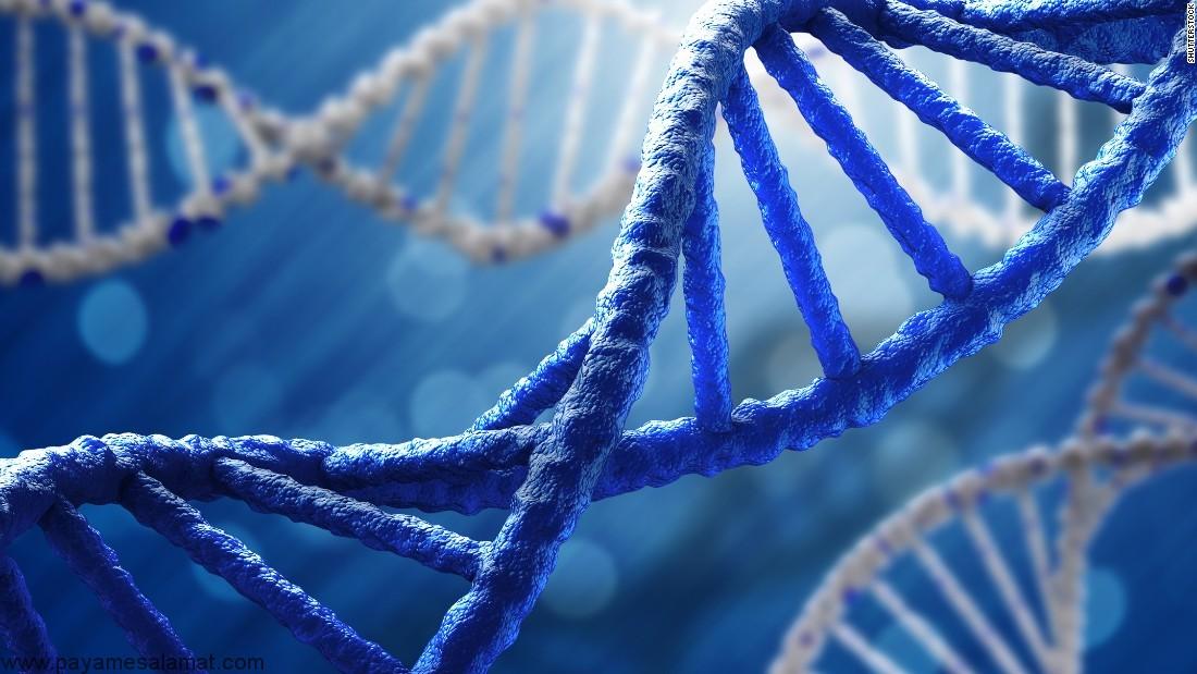 DNA میتوکندری