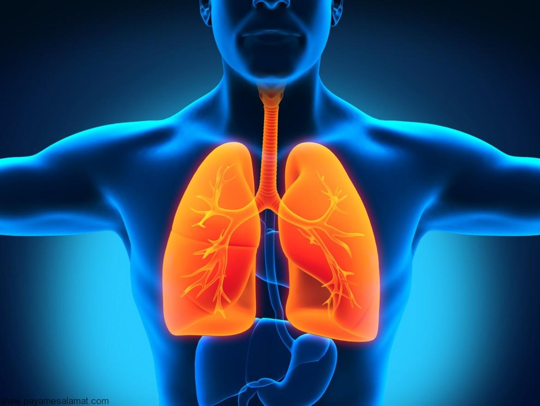 بیماری های ریوی مربوط به آزبست کدامند، چه علائمی دارند و چگونه درمان می شوند؟