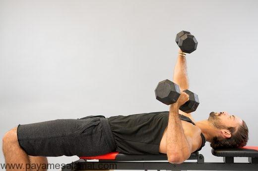 پرس سینه جایگزین دمبل بازو