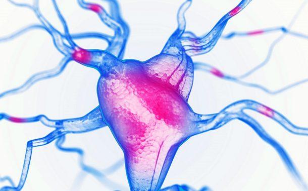 اسید گاما آمینو بوتیریک (GABA) و قدرت مکمل آن در حل اضطراب و تقویت مغز