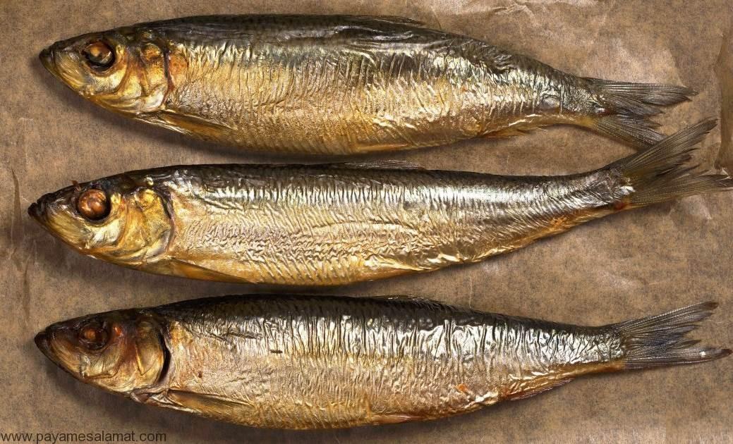 خواص شاه ماهی برای بدن و ارزش غذایی این ماهی