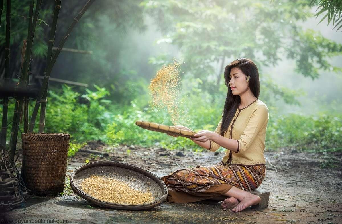نشاسته مقاوم در برنج سفید چیست؟